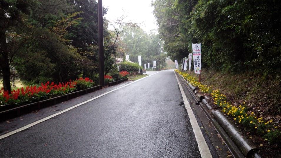 こんなきれいな道もあります。地元の人が植えた花です。