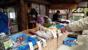 新鮮なお野菜を売っています