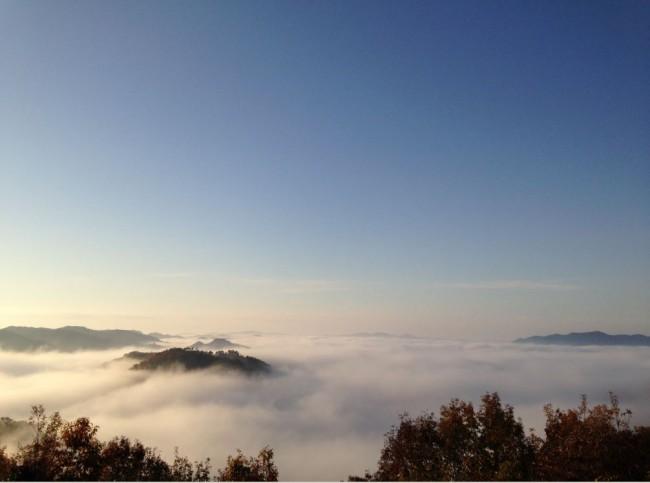 まさに雲の海