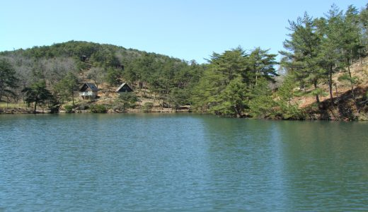 高梁自然公園キャンプ場で小さい春見ぃつけた!